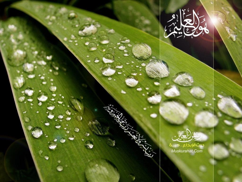 Islamic Wallpaper 6