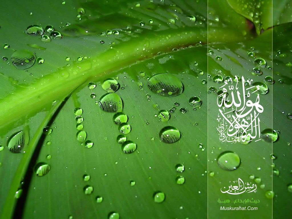 islamic wallpapers page 1